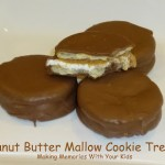 Peanut Butter Mallow Cookie
