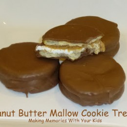 Peanut Butter Mallow Cookie Treats
