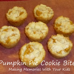 Pumpkin Pie Cookie Bites