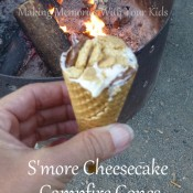 s'more cheesecake campfire cones