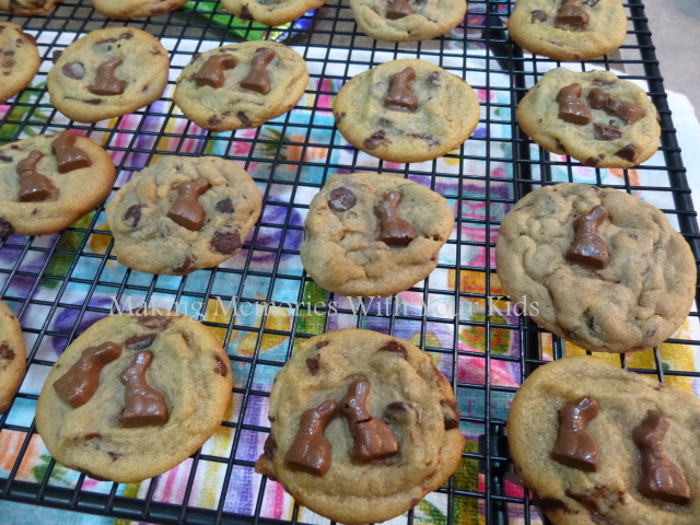 Iddy Biddy Bunny Chocolate Chip Cookies