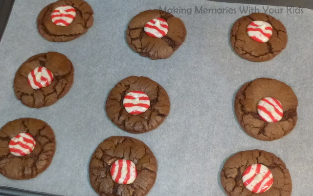 Chocolate Peppermint Swirl Cookies