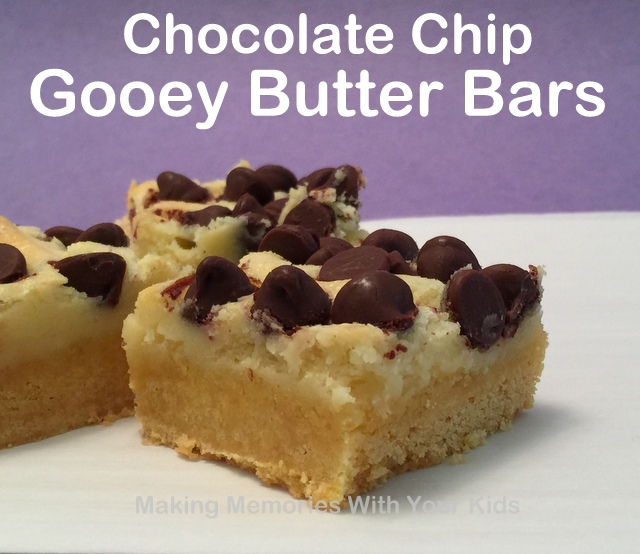 Gooey Chocolate Chip Butter Bars