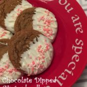 Chocolate Dipped Gingerdoodles